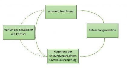 Chronischer Stress 2 420x232 - Naturheilkunde